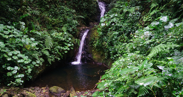 Arenal Volcano tours warm spring