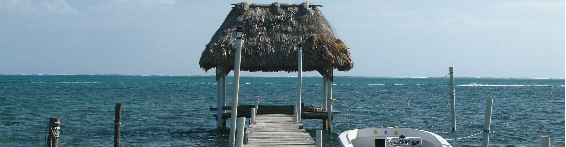Bus transport Trips pass Belize